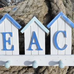 beachhookdg15461